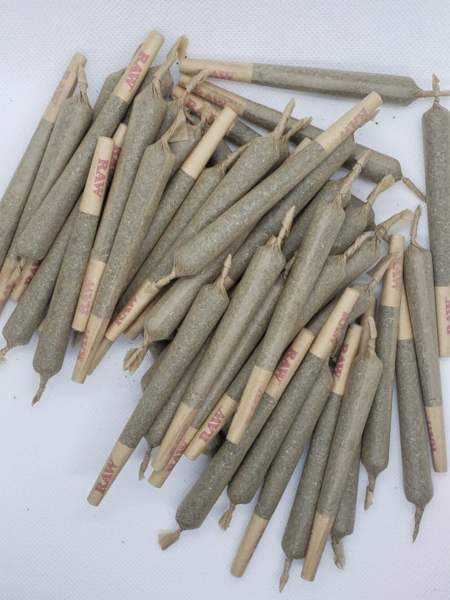 extra large pre-roll 50 quantity